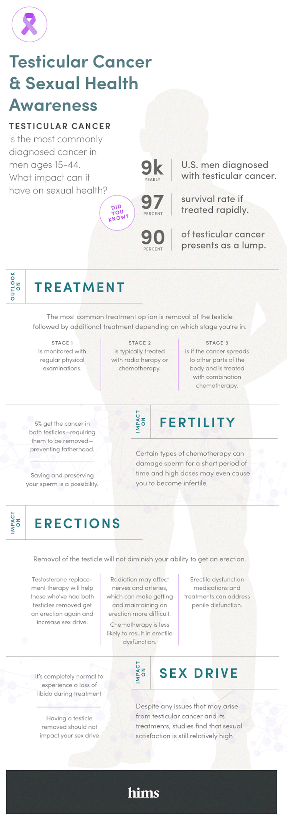 [infographic: testicular cancer]