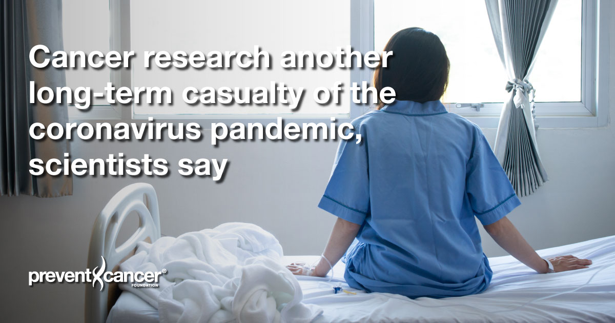Cancer research another long-term casualty of the coronavirus pandemic, scientists say